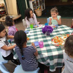 Healthy minds, bodies & souls – all here at Te Papapa Preschool